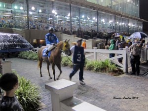 Fair Grounds FOR SALE